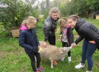 Šventėme gyvūnų dieną